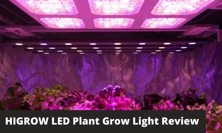 HIGROW LED Plant Grow Light Review