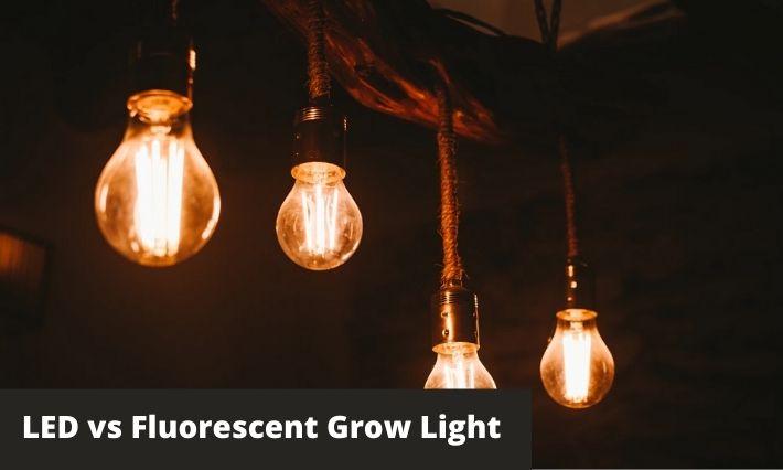 led vs Fluorescent grow light