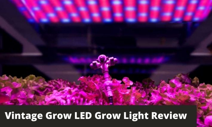 Vintage Grow LED Grow Light Review