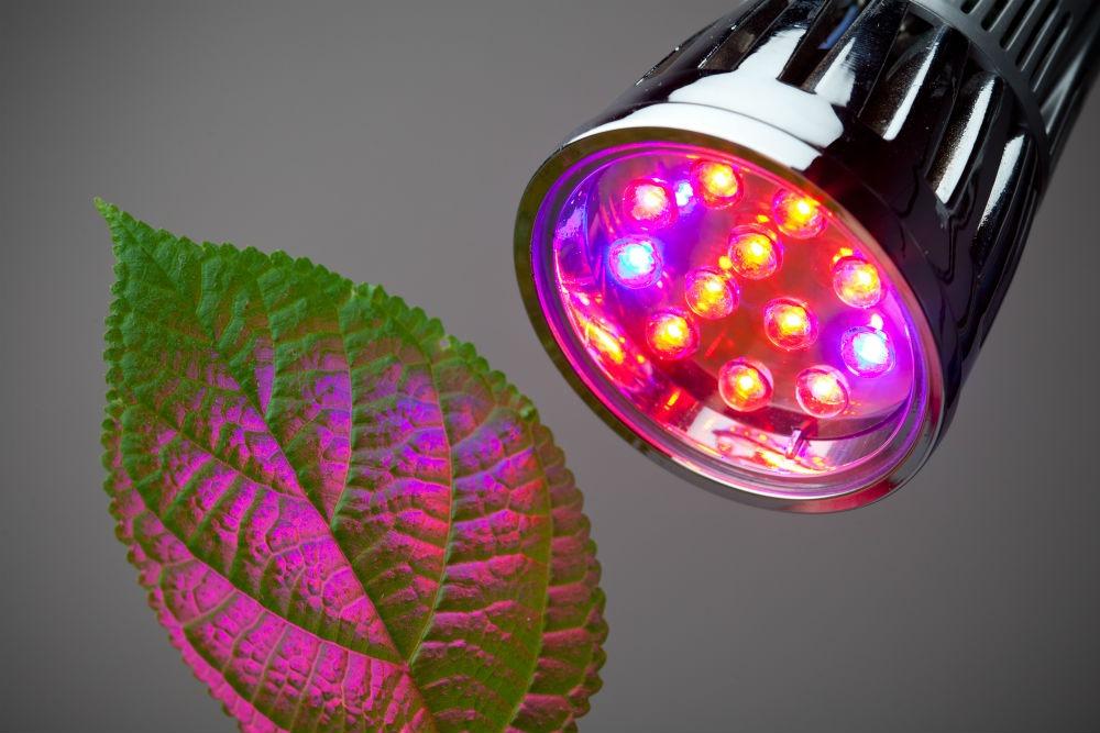 determine your grow light's lifespan