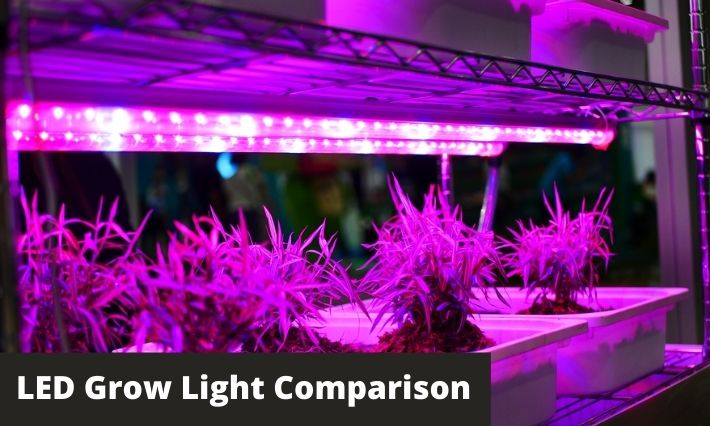 Led Grow Light Comparison