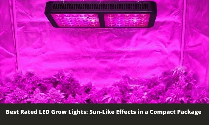Best Rated LED Grow Lights: Sun-Like Effects in a Compact Package