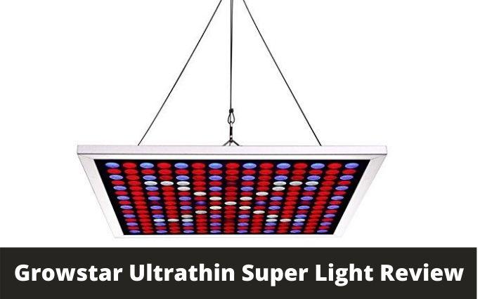 Growstar Ultrathin Super Light Review