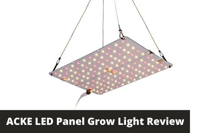ACKE LED Panel Grow Light Review