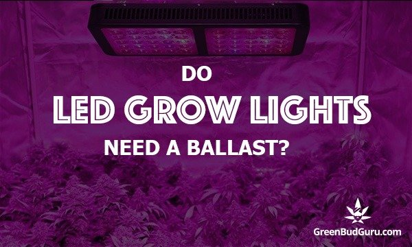Do LED Grow Lights Need A Ballast?