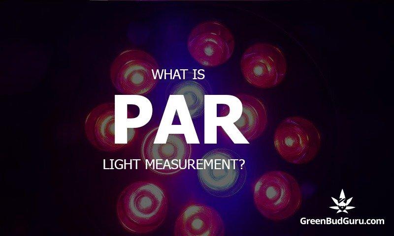 What is PAR light measurement?