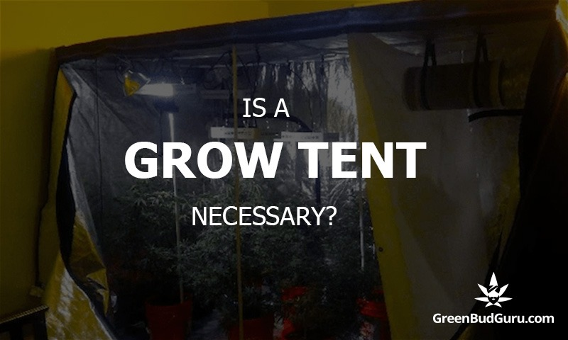 is a grow tent necessary