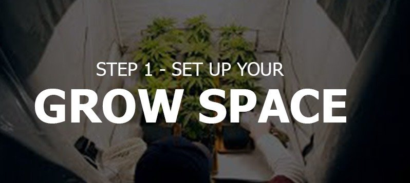 Set Up Your Grow Space
