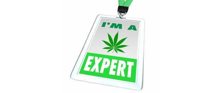 Customer Service Best Practices Things A Budtender Should Know