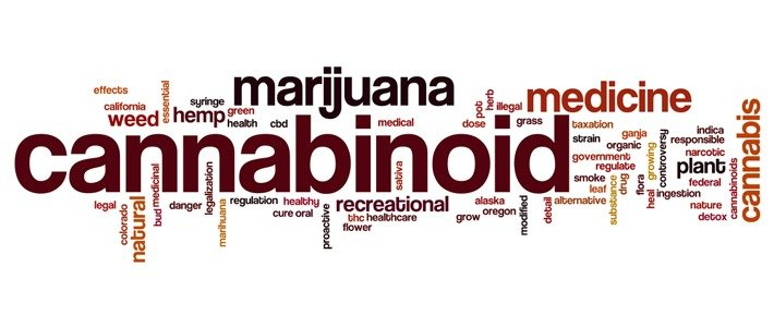 Marijuana Vocabulary Things A Budtender Should Know
