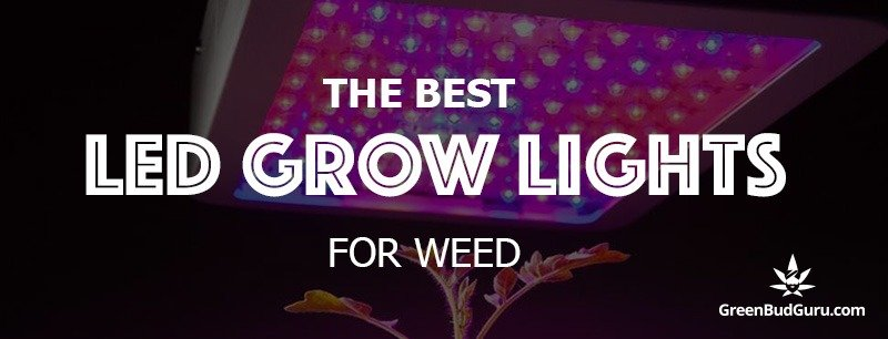 The Best LED Grow Lights For Weed 2019 - GreenBudGuru