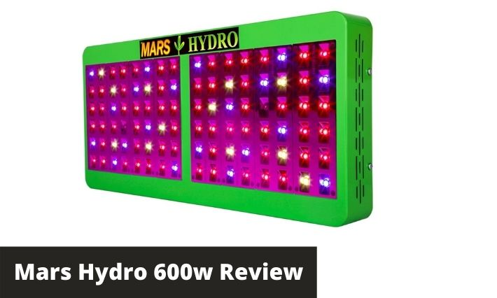 mars hydro 600w review