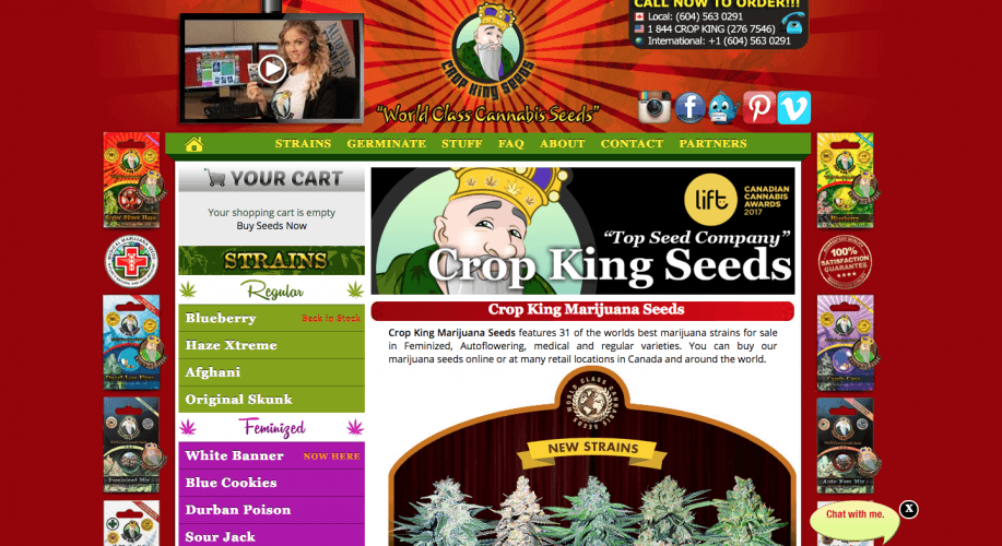 Crop King Best Seed Banks To Order From