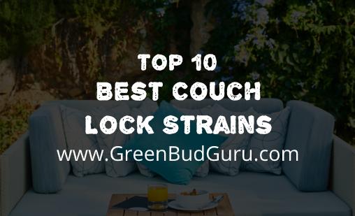 Best Couch Lock Strains