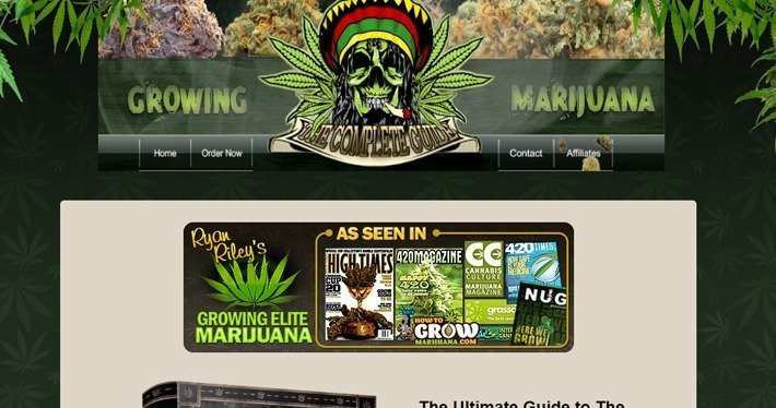 Cannabis Affiliate Programs - How to Grow Weed 420