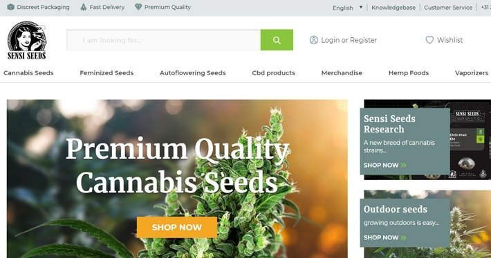 Cannabis Affiliate Programs - Sensi Seeds Affiliate Program