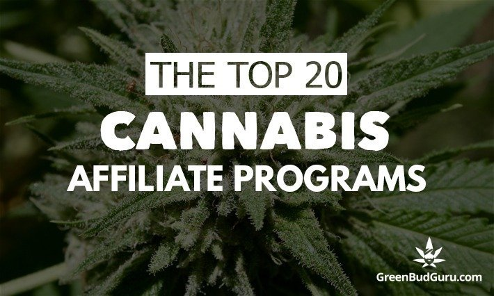 Top 20 Cannabis Affiliate Programs