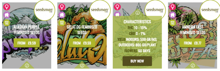 seedsman review strain selection