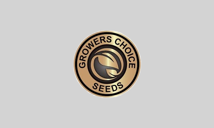 growers choice seeds review about