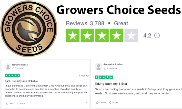 growers choice seeds review