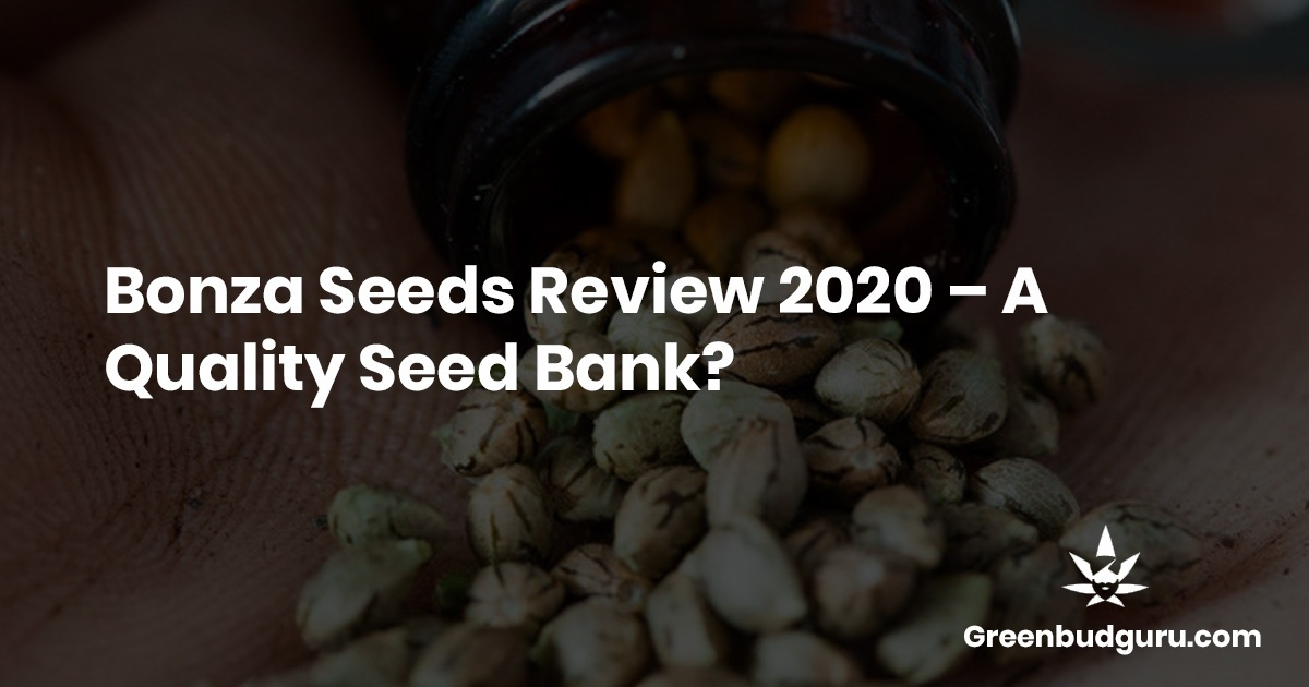Bonza Seeds Review 2020s