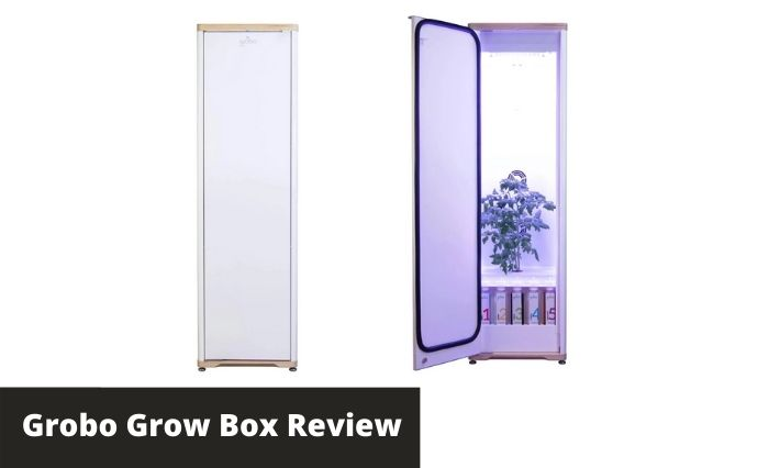 Grobo Grow Box Review