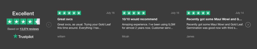 ILGM Reviews