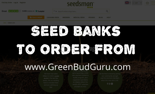seed banks to order from