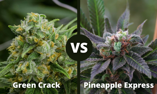 green crack vs pineapple express