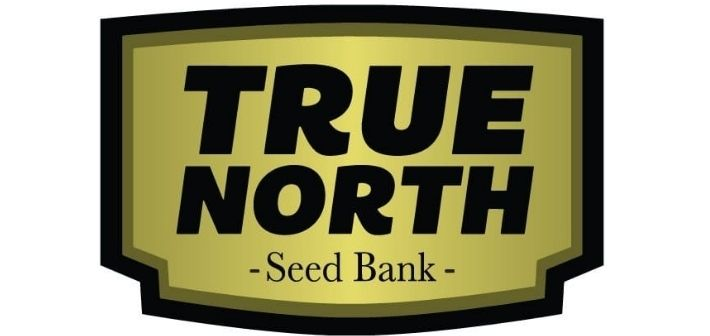 about true north seeds