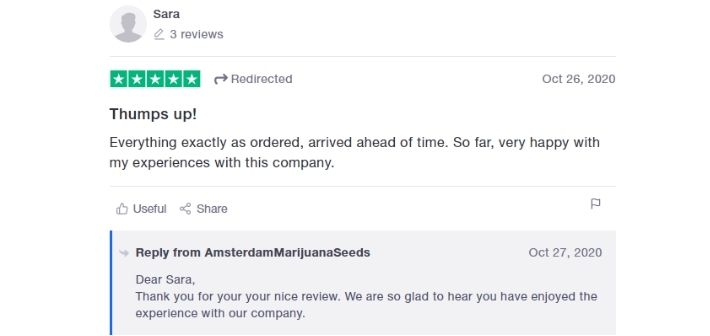 amsterdam marijuana seeds reviews