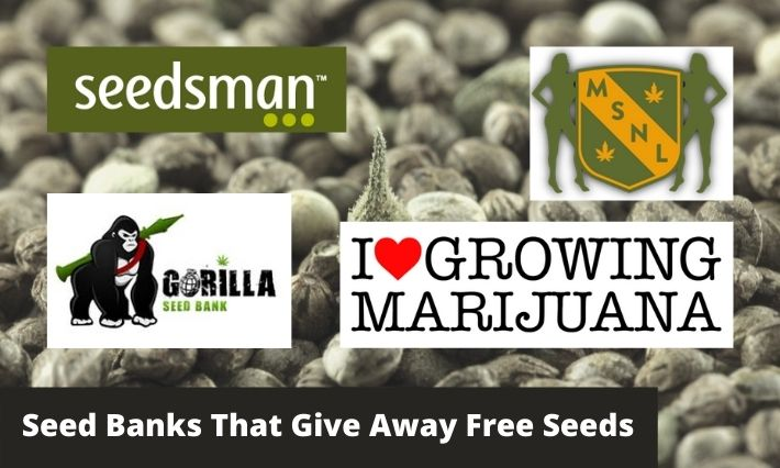 seed banks that give away free seeds