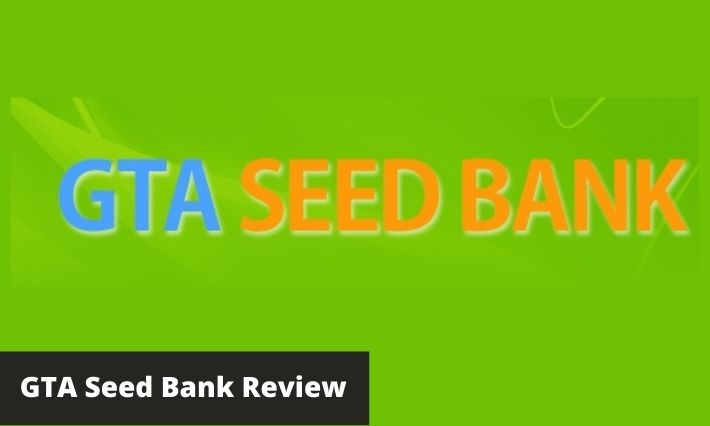 gta seed bank review