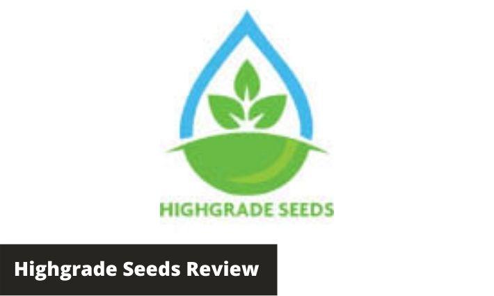 highgrade seeds review