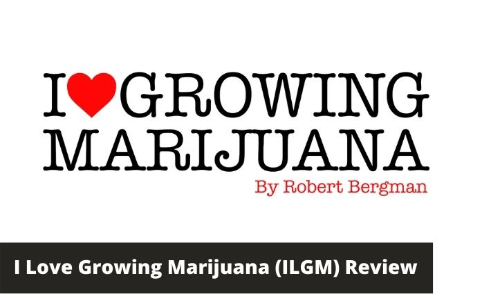 ilgm review