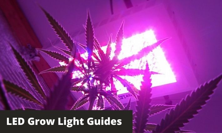 led grow lights guide