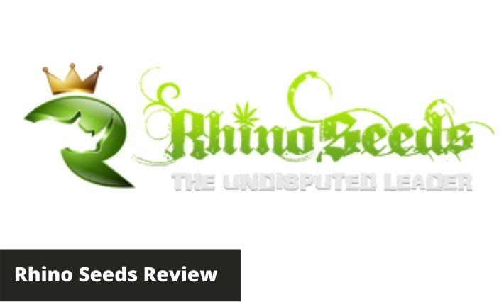 rhino seeds review