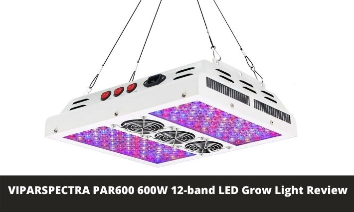 VIPARSPECTRA PAR600 600W 12-band LED Grow Light Review
