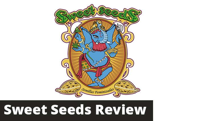 sweet seeds review