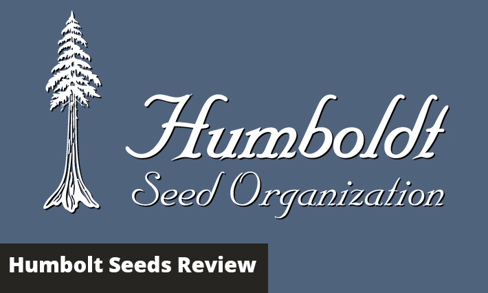 humboldt seeds review